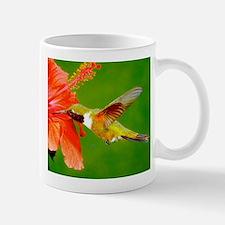 Hummingbird01nNRc2 Mugs