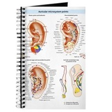 Unique Endocrine Journal