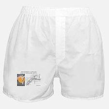 Starship Captain: Gunslinger  Boxer Shorts