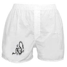 Mens shorts Boxer Shorts