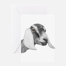 Nubian Goat Sketch Greeting Card