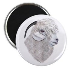 Angora Goat Portrait Magnet