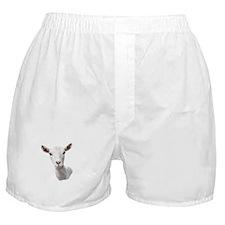 Saanen Goat Portrait Boxer Shorts