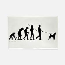 Akita Evolution Rectangle Magnet (10 pack)