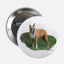 Cassidy the Boxer Button