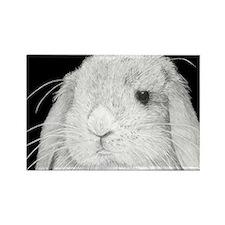 Lop Rabbit Rectangle Magnet