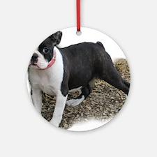 Boston Terrier Pup 1 Keepsake (Round)