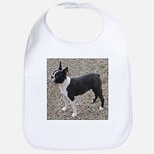 Boston Terrier Pup2 Bib
