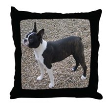 Boston Terrier Pup2 Throw Pillow