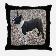 Boston Terrier Pup2 Throw Pillow