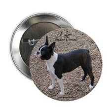 Boston Terrier Pup2 Button