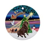 XmasMagic / Chocolate Labrador Ornament (Round)