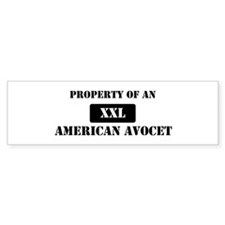 Property of a American Avocet Bumper Bumper Sticker
