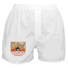 Bush Fiddled While America Bu Boxer Shorts
