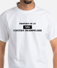 Property of a Eastern Meadowl Shirt