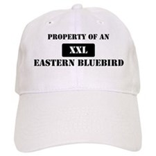 Property of a Eastern Bluebir Baseball Cap