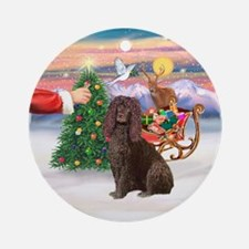 Treat for a Water Spaniel Ornament (Round)