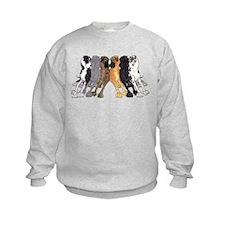 N6 Colors Sweatshirt