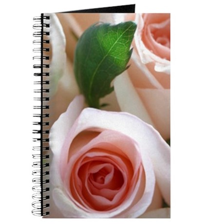 Single Pink Rose bouquet closeup journal