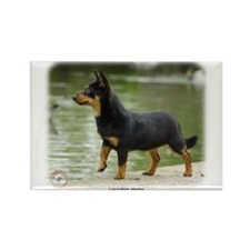 Lancashire Heeler 9R038D-013 Rectangle Magnet
