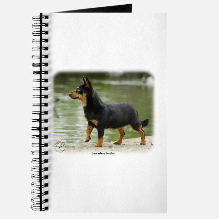 Lancashire Heeler 9R038D-013 Journal