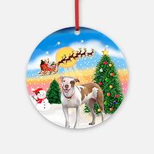 TakeOff1W/ Pitbull Ornament (Round)