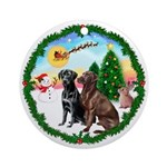 TakeOff1W/ Two Labradors Ornament (Round)