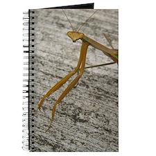 Cute Alien mantis Journal