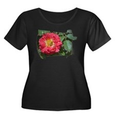 Bee on Rose 2 T