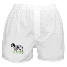 bluetick coonhound Boxer Shorts