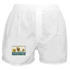 """Arnold Dillon for Sheriff"" Boxer Shorts"