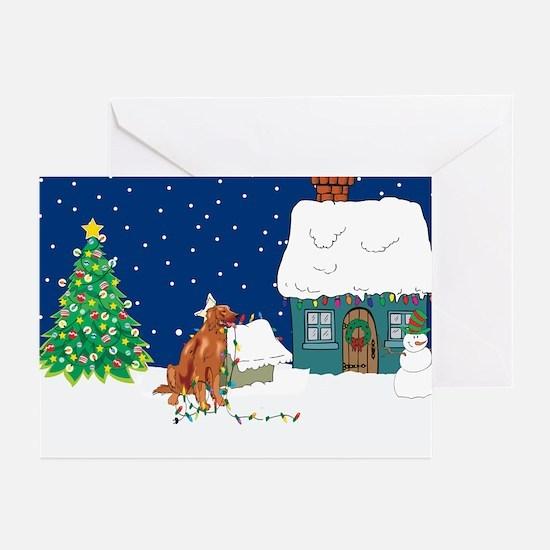Christmas Lights Irish Setter Greeting Cards (Pk o