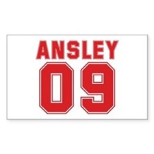 ANSLEY 09 Rectangle Decal