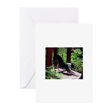 Alumni - Photography 3 Greeting Cards (Pk of 10)