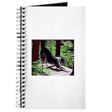 Alumni - Photography 3 Journal