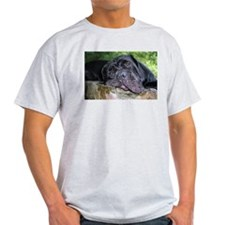 Pugs sleep rock (2) T-Shirt