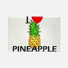 I Love Pineapple Rectangle Magnet