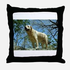 Unique Yellow lab photography Throw Pillow