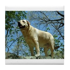 Cool Yellow lab labrador retreivers Tile Coaster