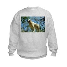 Labrador photography Sweatshirt