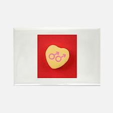 Glbt valentines day Rectangle Magnet