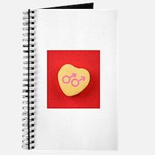 Glbt valentine%27s day Journal