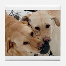 Cute Yellow lab photography Tile Coaster