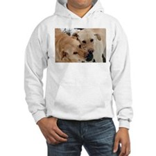 Unique Labrador playing Hoodie