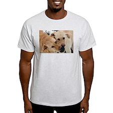 Unique Yellow labradors T-Shirt