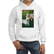 Cool Labrador photography Hoodie