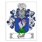 Galli Family Crest Small Poster