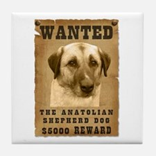 """Wanted"" Anatolian Shepherd Dog Tile Coaster"