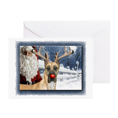 DaneDeer Greeting Cards (Pk of 10)