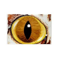 Painted Cat's Eye Rectangle Magnet